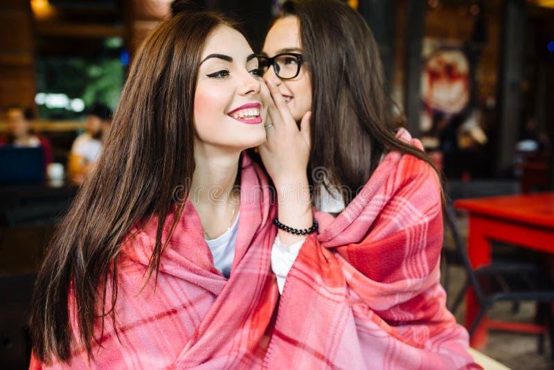 两年轻和美好的女孩份额秘密 免版税图库摄影