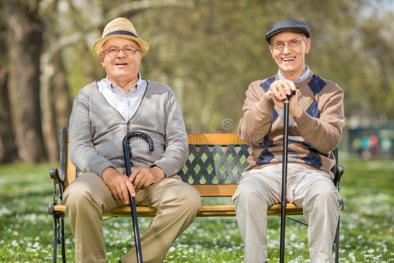两年长先生们坐一条长凳在公园 免版税库存图片