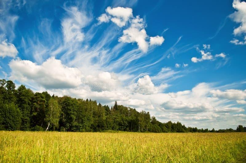 严重的cloudscape 免版税库存照片