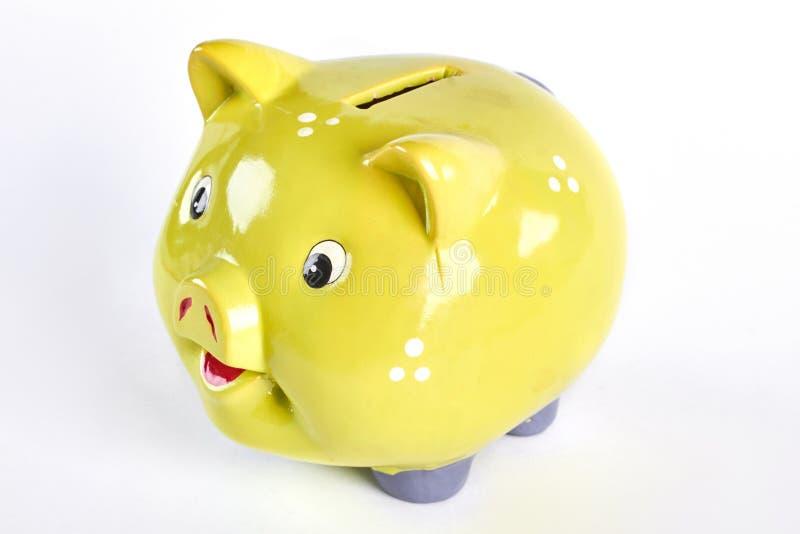 个人储款的逗人喜爱的黄色paggy银行 免版税库存照片