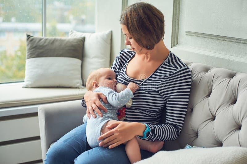 8个月吃母亲` s牛奶的婴孩 照顾哺乳的婴儿男婴,在家选址在沙发内部 免版税库存照片