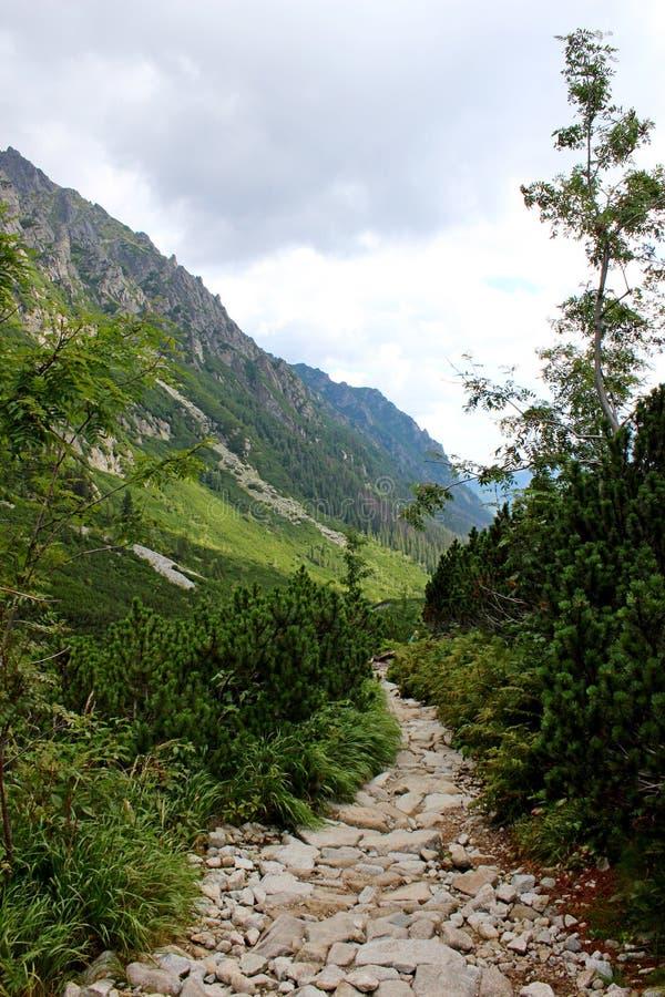 5个湖谷看法在高Tatras的 库存照片