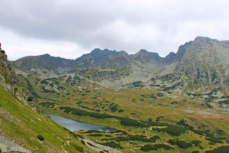 5个湖谷看法在高Tatras的 免版税库存照片