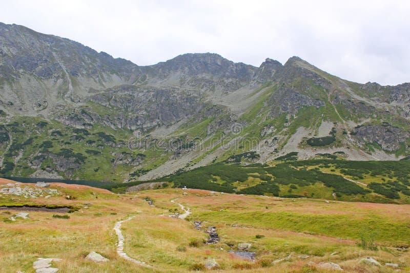 5个湖谷看法在高Tatras的 免版税库存图片