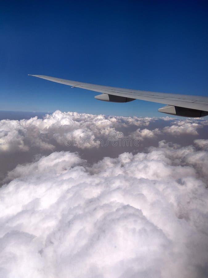 2个翼 免版税库存照片