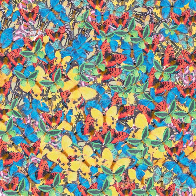 10个背景蝴蝶eps向量 库存图片