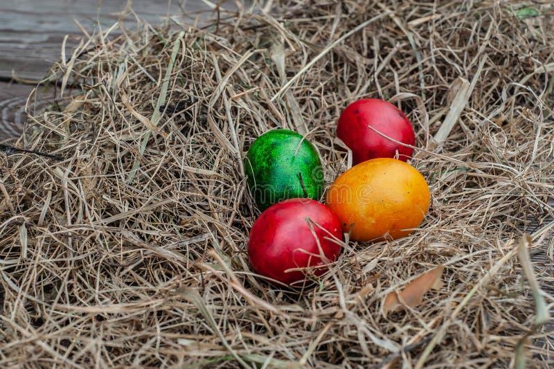 4个色的复活节彩蛋在干燥干草放置在木年迈的委员会 库存照片