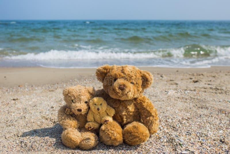 3个逗人喜爱的棕色玩具熊坐在热带海滩 库存图片
