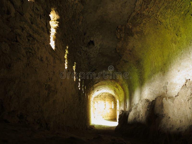 中世纪城堡的地窖 免版税库存照片