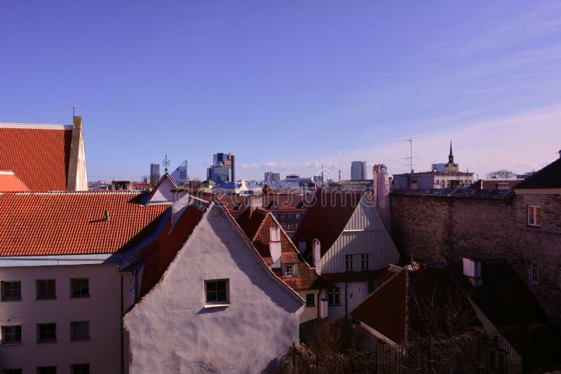 中世纪城市和它的老红色屋顶,塔林,爱沙尼亚的全景 免版税库存图片