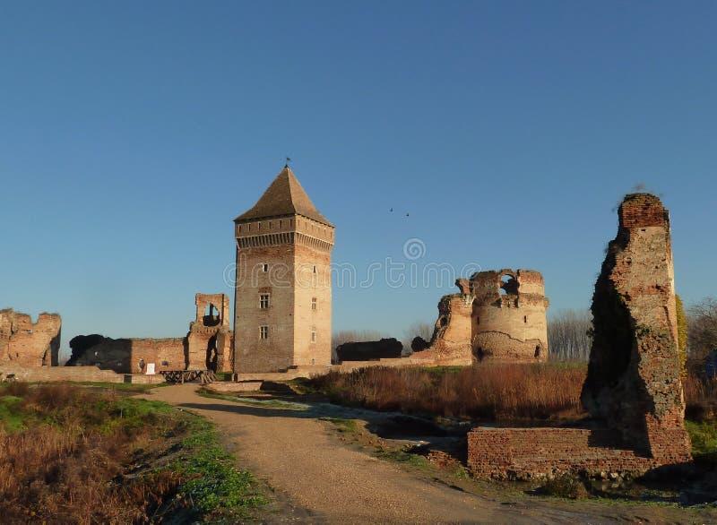 中世纪堡垒废墟在塞尔维亚 免版税图库摄影