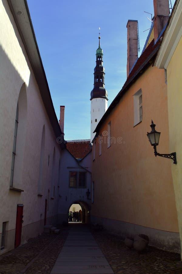 中世纪狭窄的街道在有一个灯笼的塔林在墙壁上和前面的,爱沙尼亚一个教会 图库摄影