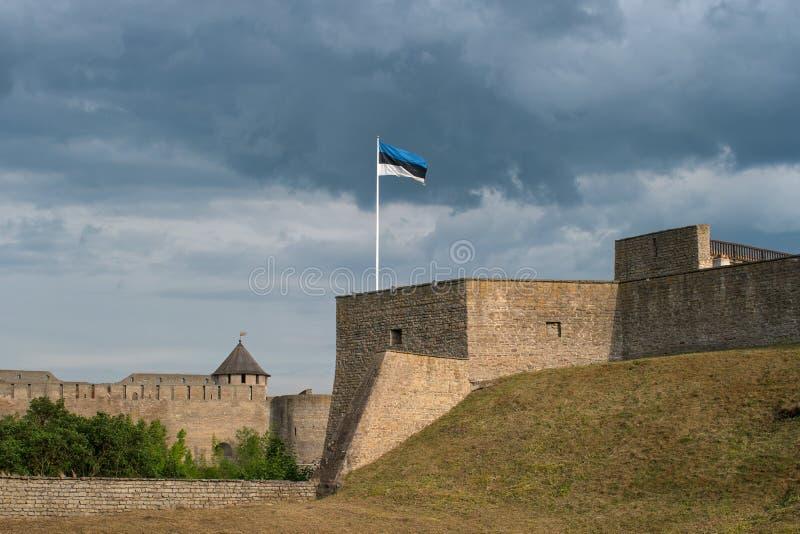 中世纪纳尔瓦城堡埃尔曼的本营 爱沙尼亚 在前景是爱沙尼亚的旗子 在背景中是  免版税图库摄影