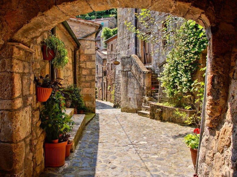 中世纪被成拱形的车道 库存照片
