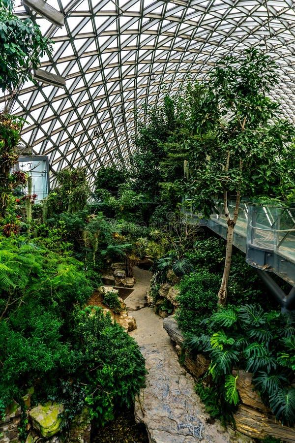 中国上海植物园温室9 库存图片