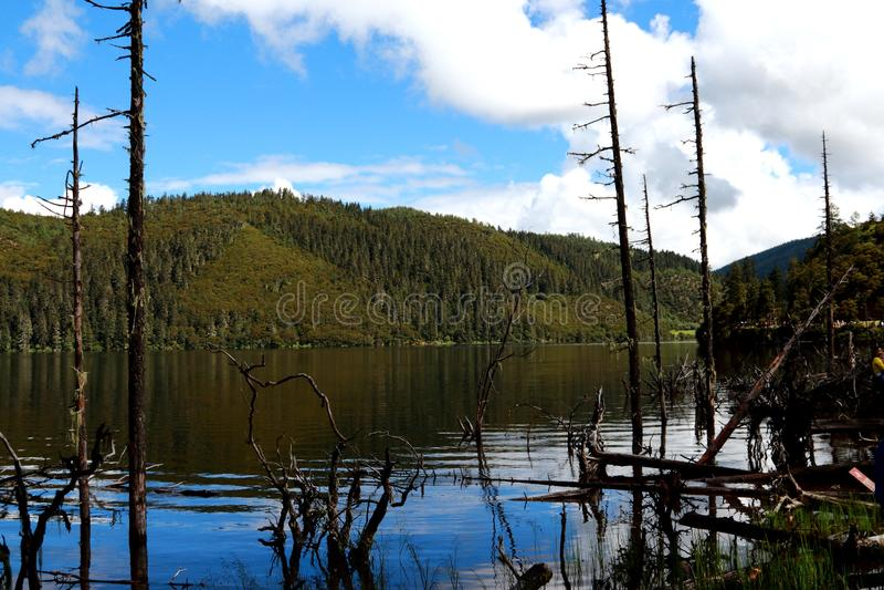 中国云南香格里拉普达措国家公园是湖 库存图片