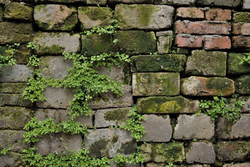 中国古老墙壁 免版税库存照片