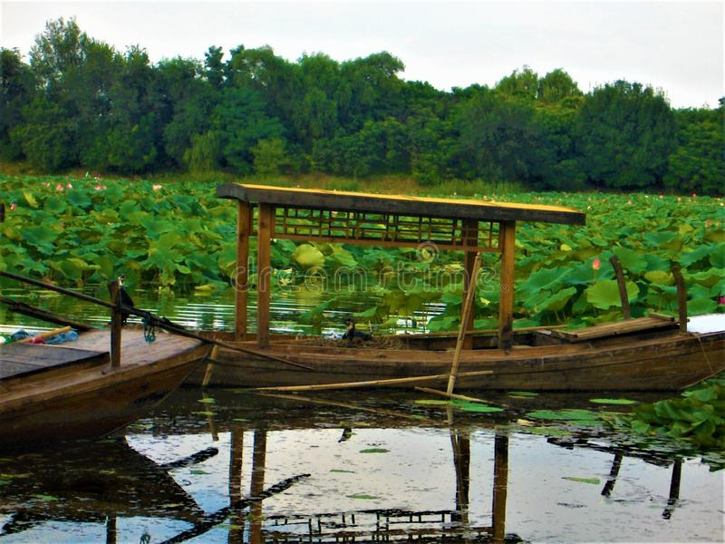 中国小船、湖和莲花,迷惑的地点 免版税库存照片
