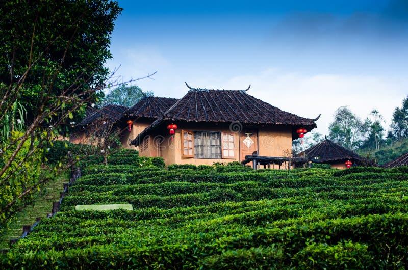 中国房子 库存图片