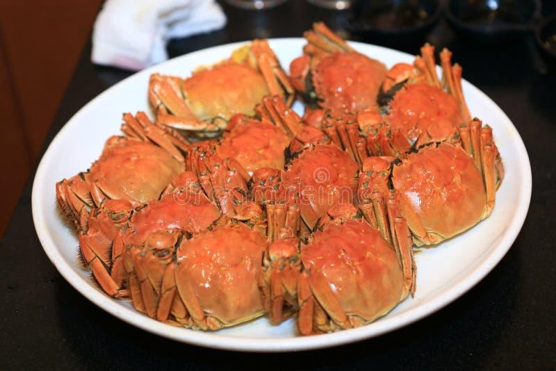 中国手套螃蟹或长毛的螃蟹 免版税库存照片