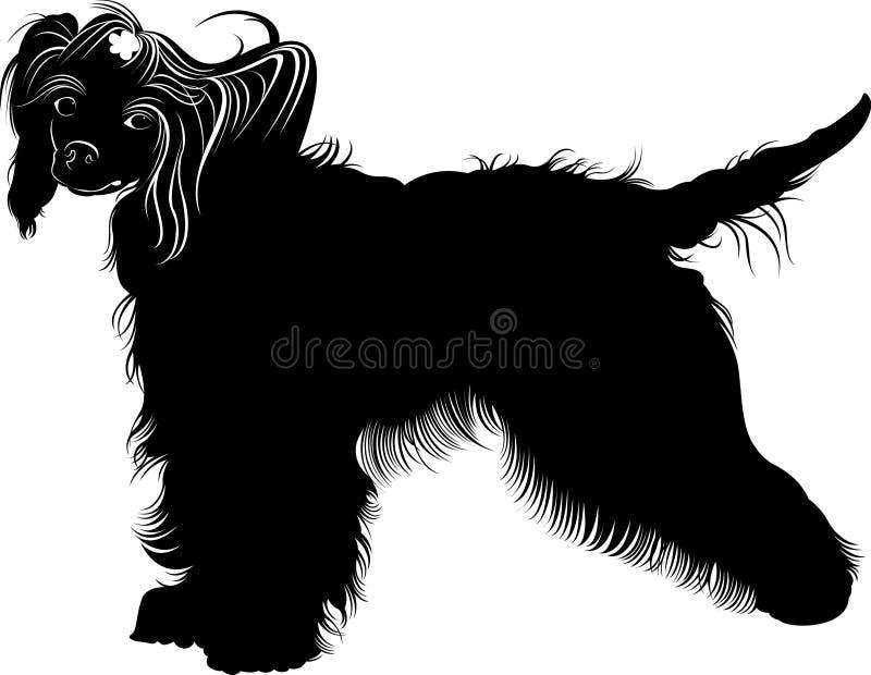 中国有顶饰狗 狗 中国有顶饰品种,在白色背景隔绝的黑白传染媒介图片 向量例证