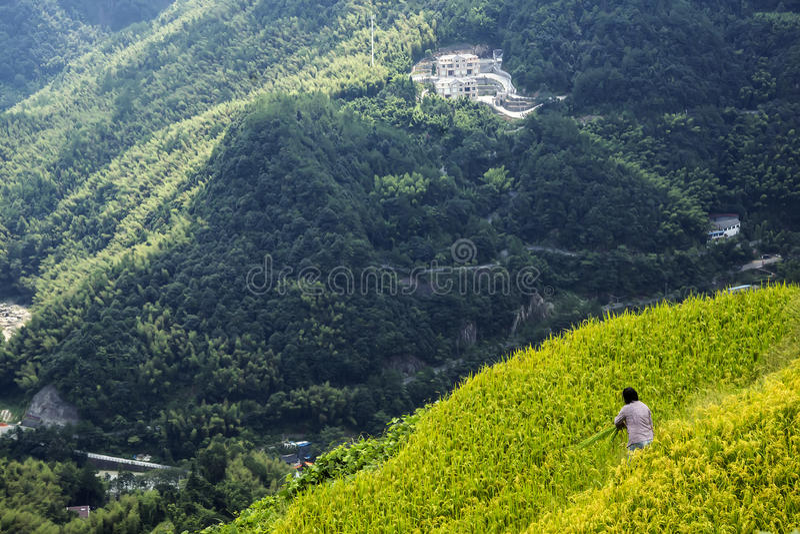 中国温州风景-山风景 库存图片
