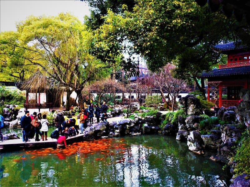 中国湖、传统建筑和幸运的红色鲤鱼 库存照片