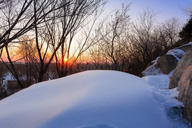 白色雪和落日 库存图片