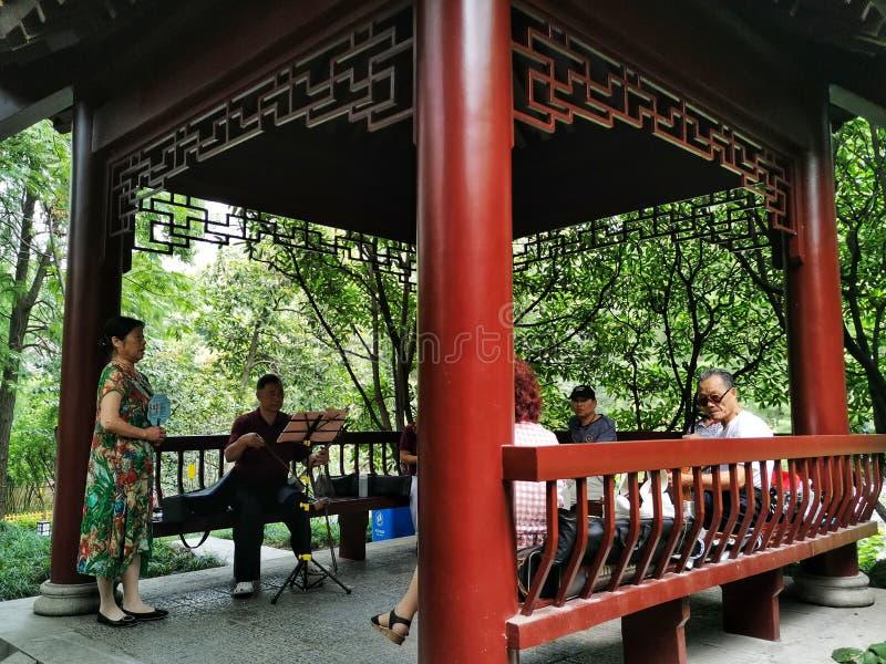 中国老年人在亭子弹奏乐器,武汉市 库存照片