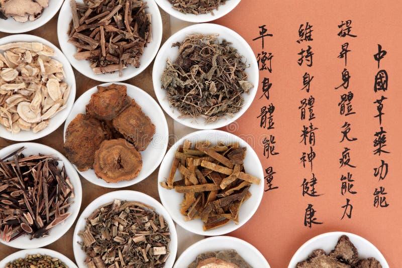 中国草药 库存图片