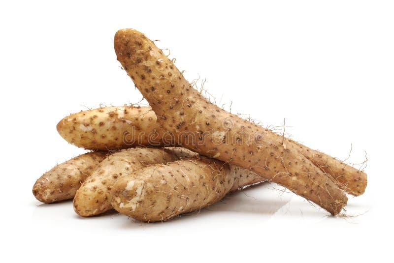中国薯类 免版税库存图片