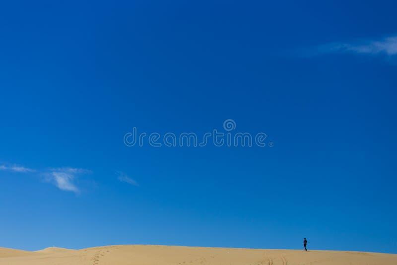 中国青海湖沙漠视图 免版税库存照片