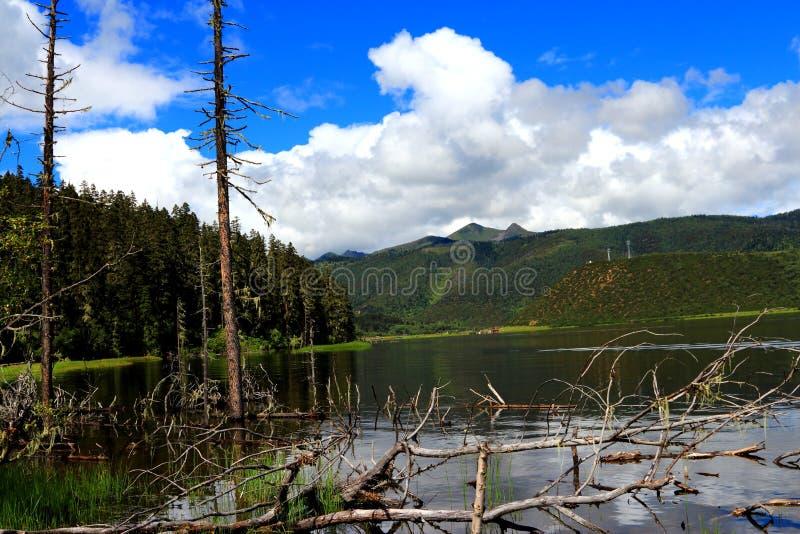 中国香格里拉普达措国家公园是湖 免版税库存照片
