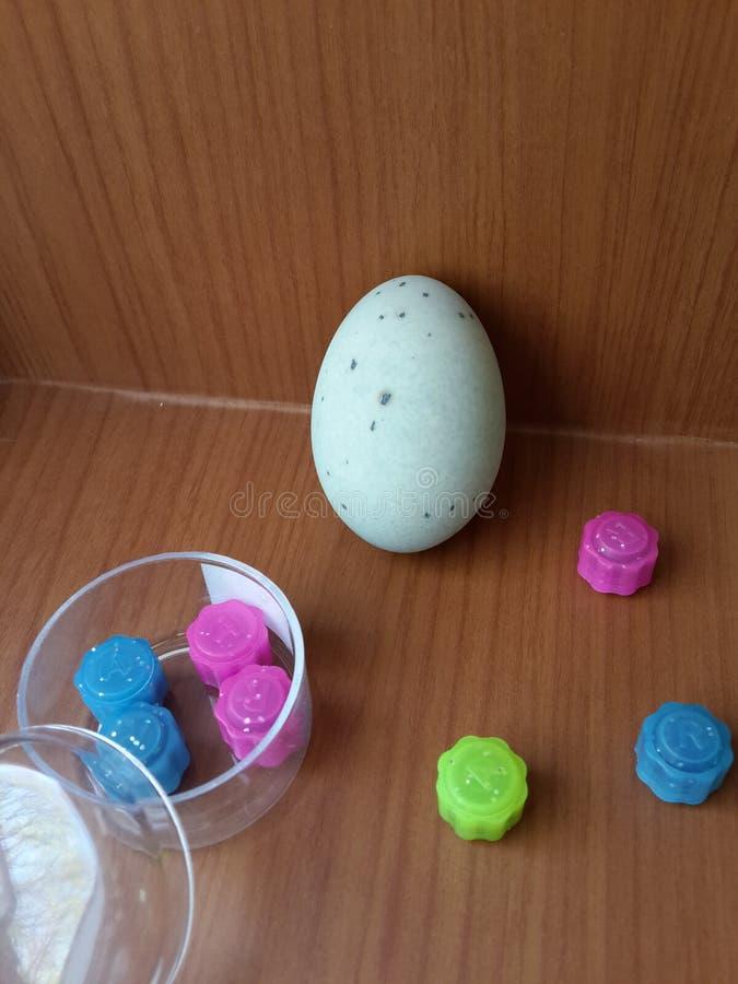 中国鸡蛋 免版税图库摄影