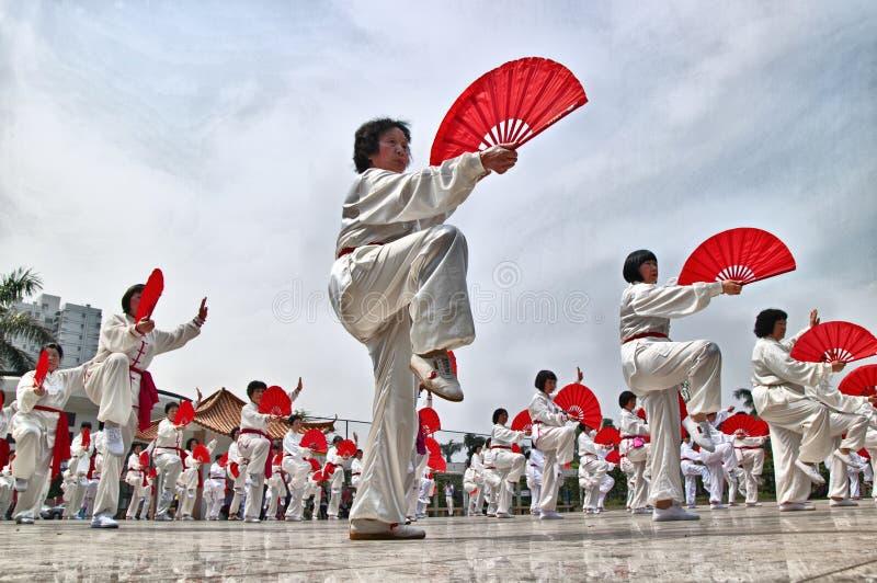 中国fu kung性能 免版税库存照片