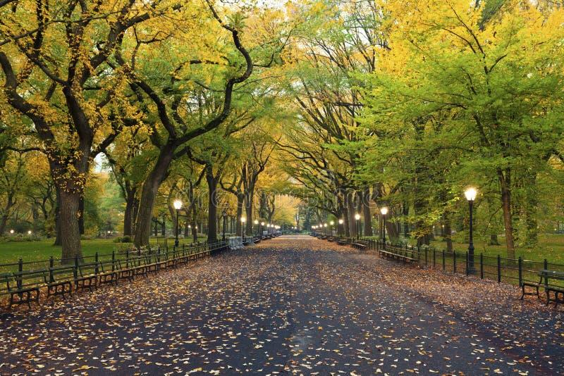 中央公园。 免版税图库摄影