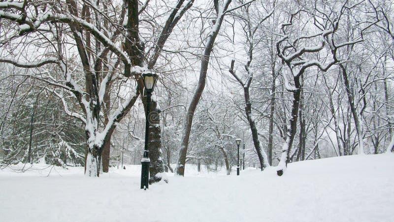中央公园冬天纽约 免版税图库摄影