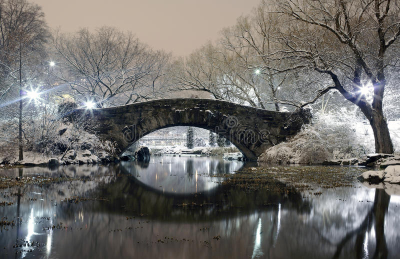 中央公园在晚上NYC 免版税图库摄影