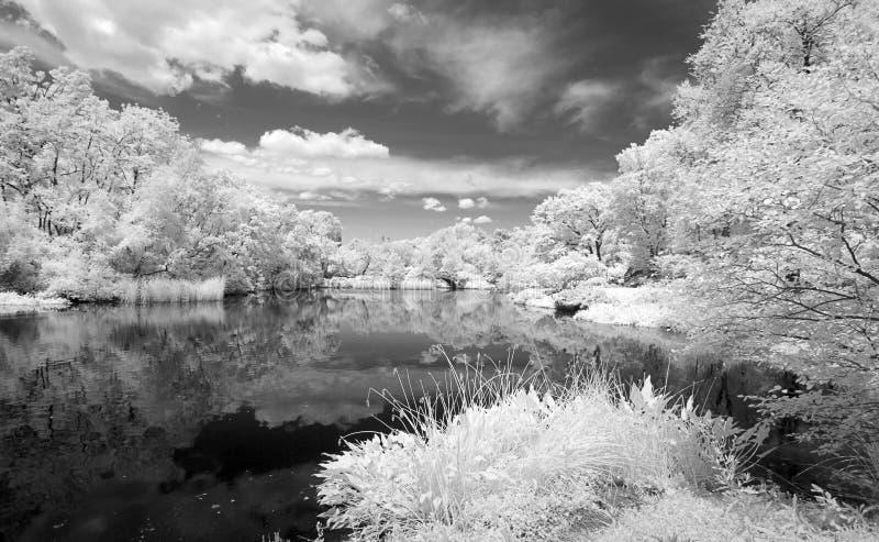 中央公园的红外图象 免版税图库摄影