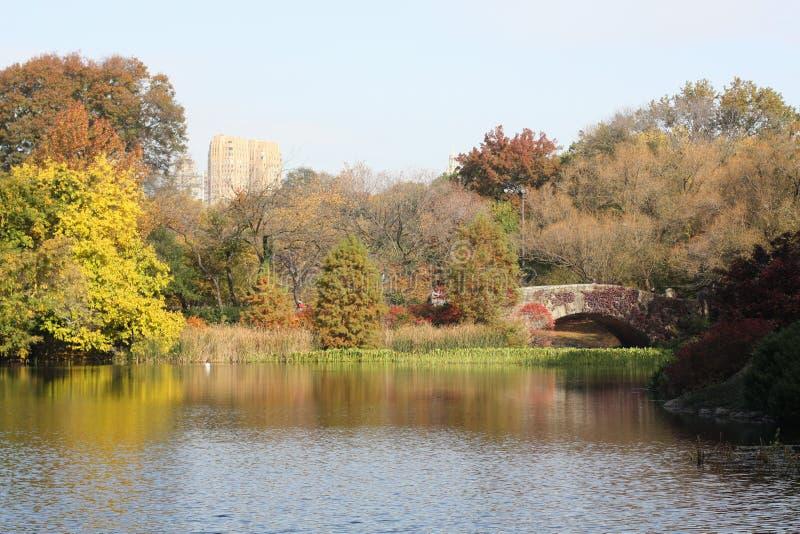 中央公园的-秋天池塘 免版税图库摄影