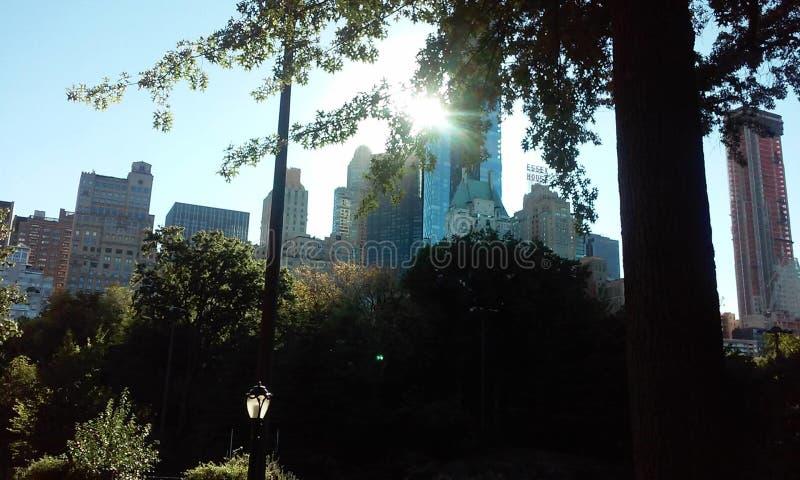 中央公园纽约美国 库存图片
