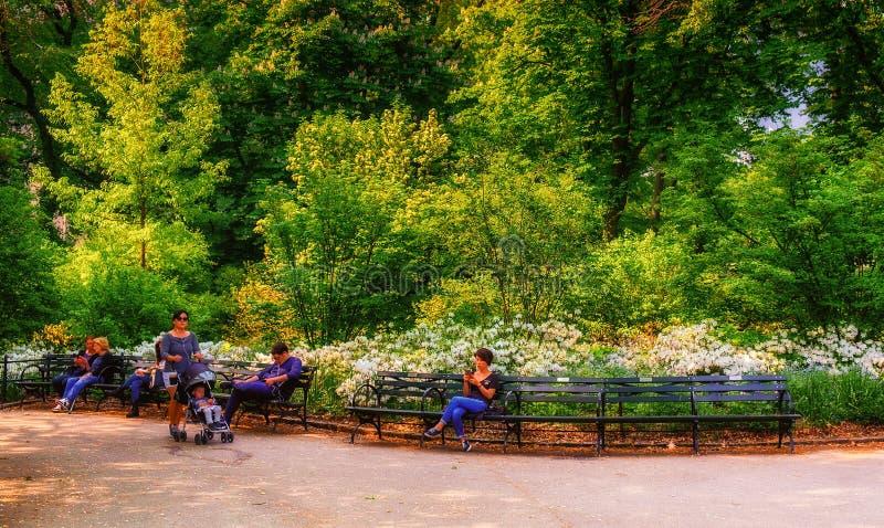 中央公园长凳 免版税图库摄影