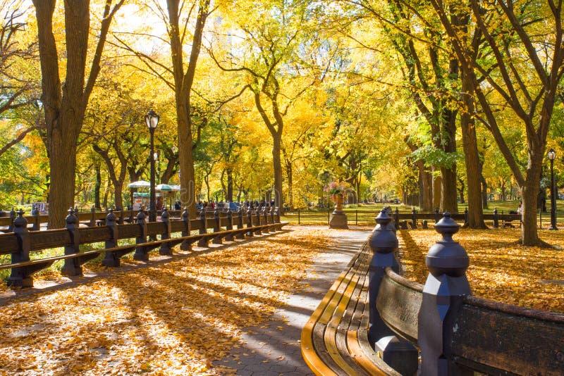 中央公园NY 免版税库存照片