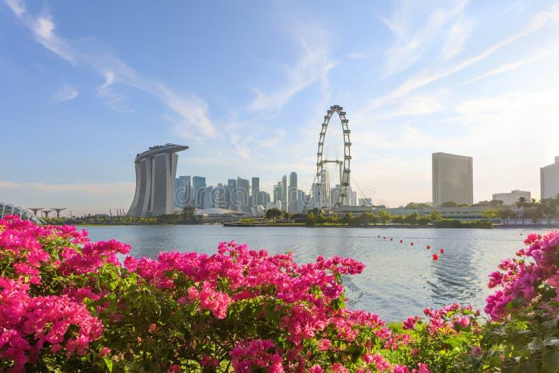 中央新加坡看法  库存照片