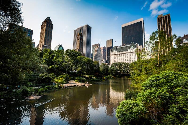 中央新的公园约克 在backgroud的Skyscrappers 夏天 纽约 库存图片