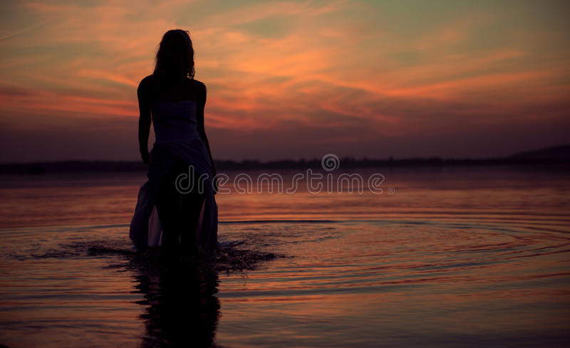 水中女仙的剪影 库存图片