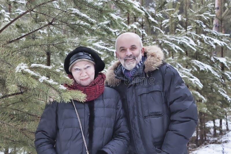 中年夫妇画象在年轻松树中分支的  库存图片