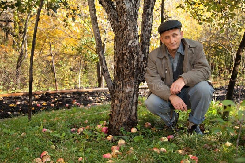 中年苹果的人坐周道的结构树下 免版税库存照片