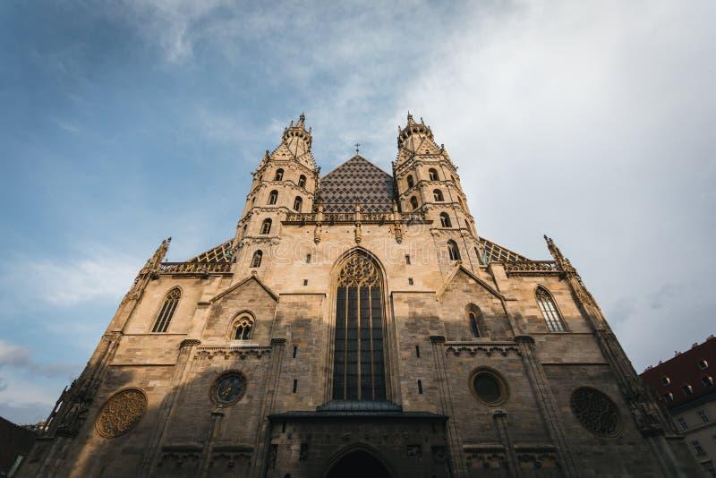 中心广场的圣斯蒂芬的大教堂在维也纳,奥地利 免版税库存图片
