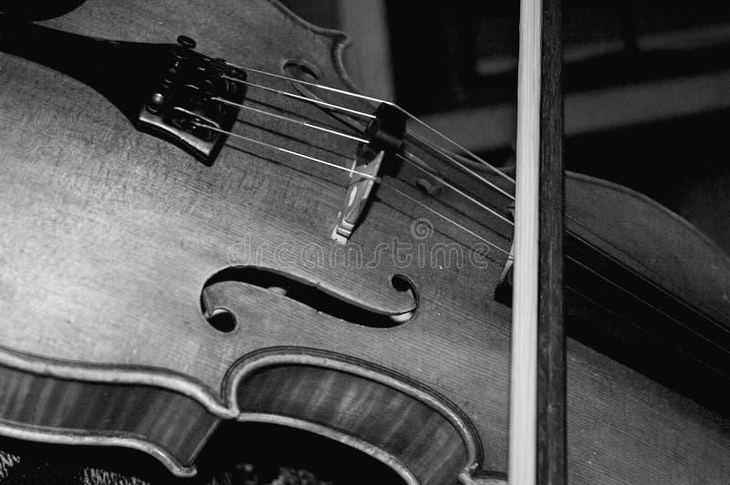 中提琴 库存图片